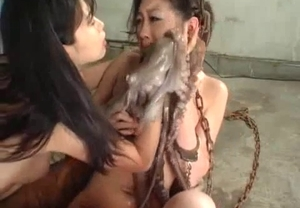 Asian video with bestiality fucking for an octopus